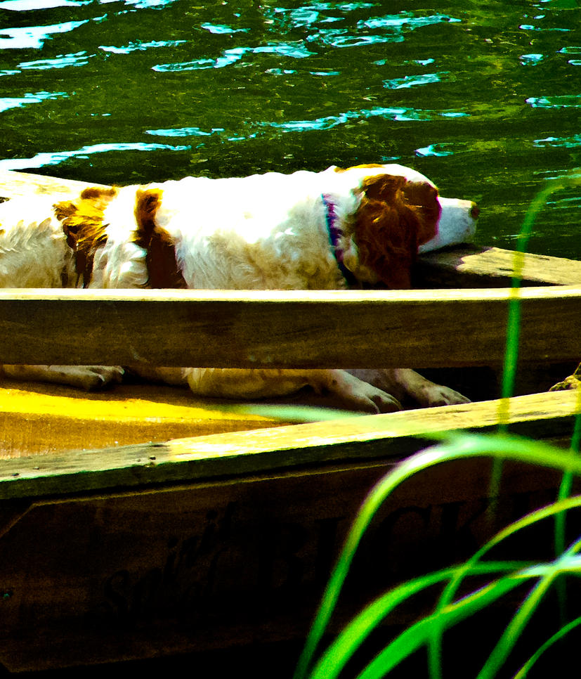 Dog Tired  Boatman by rusrick