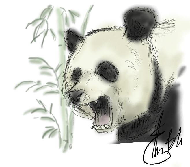 Cavete Panda by etesian