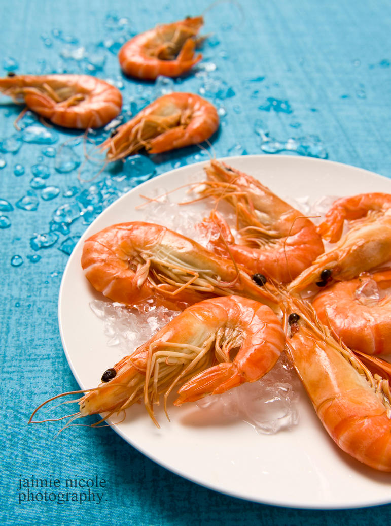 prawns. by paradoxphotography