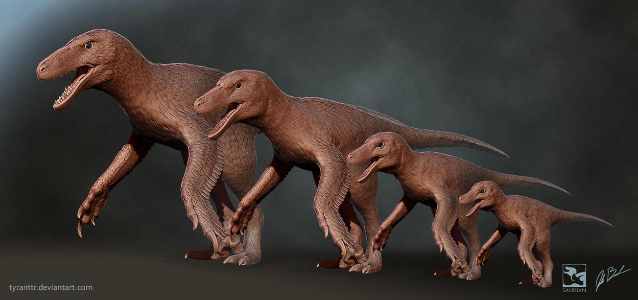 Dakotaraptor Ontogeny - Saurian by TyrantTR