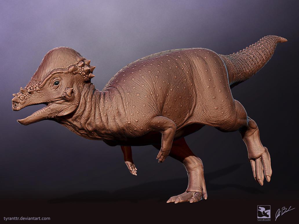 Pachycephalosaurus - Saurian by TyrantTR