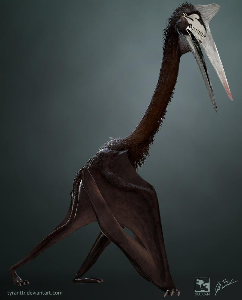 Quetzalcoatlus Sp. - Saurian by TyrantTR