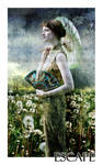 Escape by edera-ladygoth