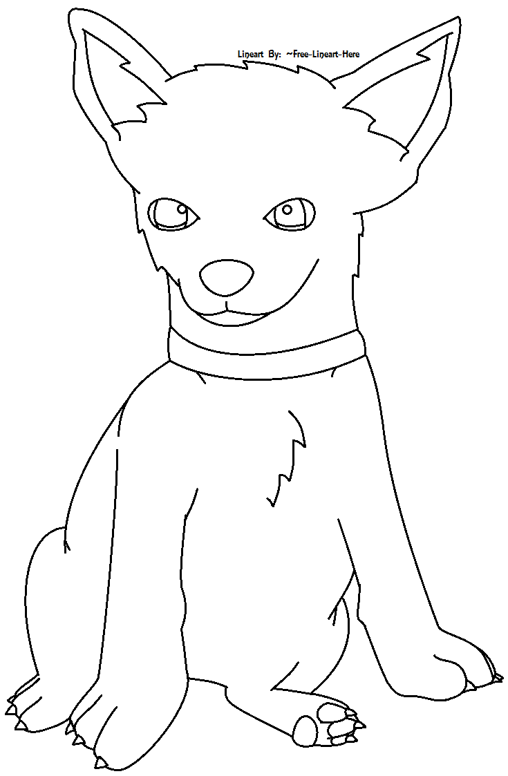 chihuahua puppy lineart by free lineart here on deviantart