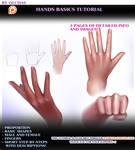Hands Basics tutorial preview