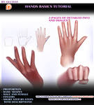 Hands Basics tutorial preview by OlchaS