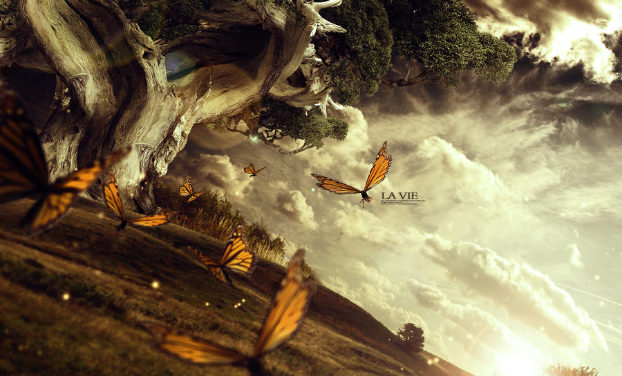 La Vie by Vanleith