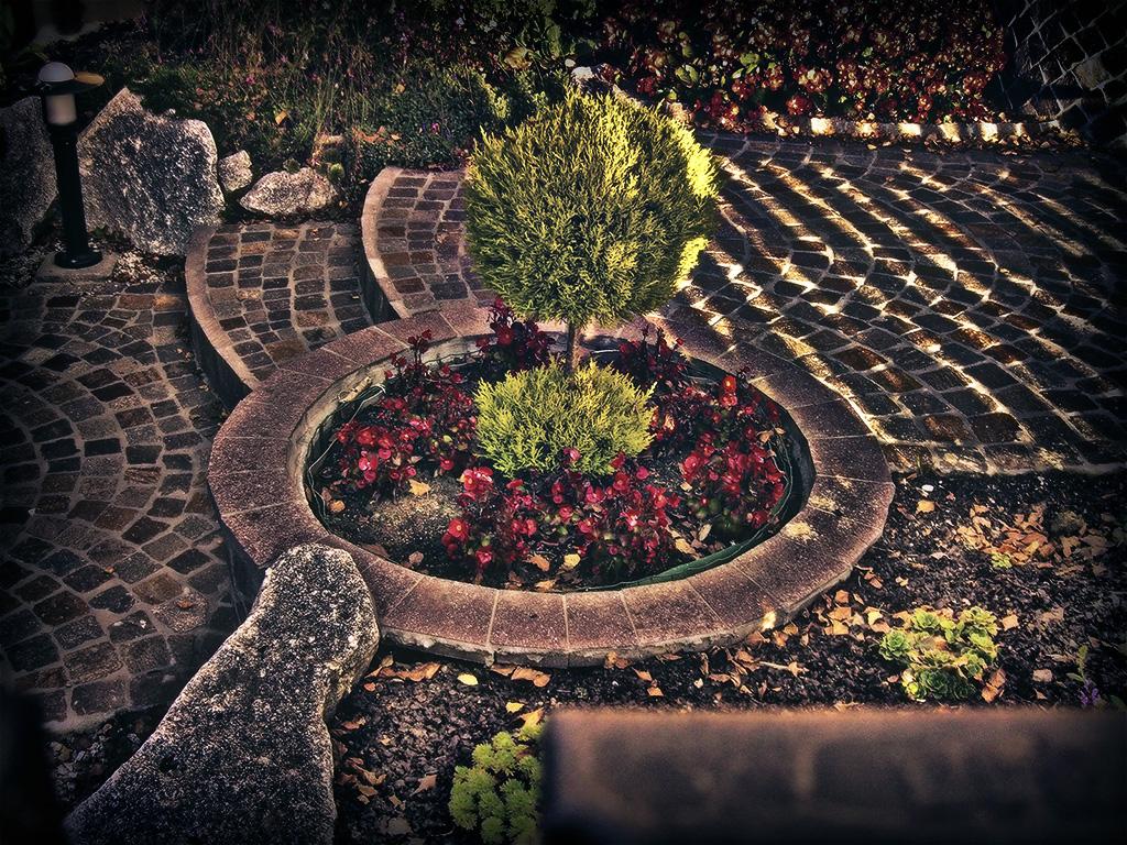 Garden 02 by Nobiax