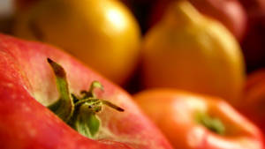Fruits by Yughues