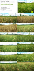 Unity : Grass Pack by Yughues