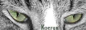 Eyes of Green ID by Koeryn
