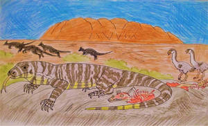 The Aussie Dragon by WDGHK