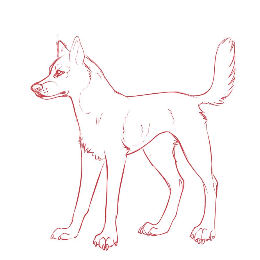 how to draw a husky youtube