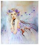 Butterfly Keeper