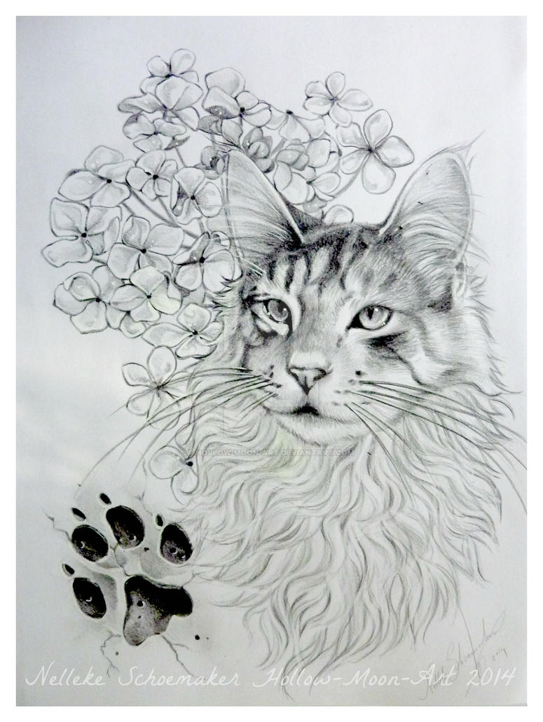 main coon cat tattoo design by hollow moon art on deviantart. Black Bedroom Furniture Sets. Home Design Ideas