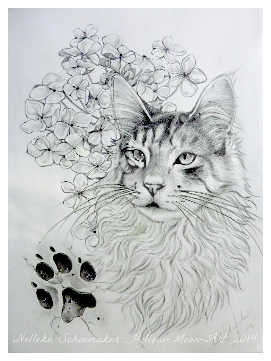 Mainline Art And Design : Main coon cat tattoo design by hollow moon art on deviantart