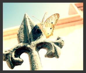 Butterfly by Noker666