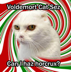 Voldemort Cat Sez by AGDdesigns