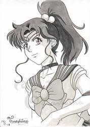 Sailor Jupiter by Tarashima
