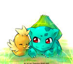 PM - Bulbasaur and Torchic