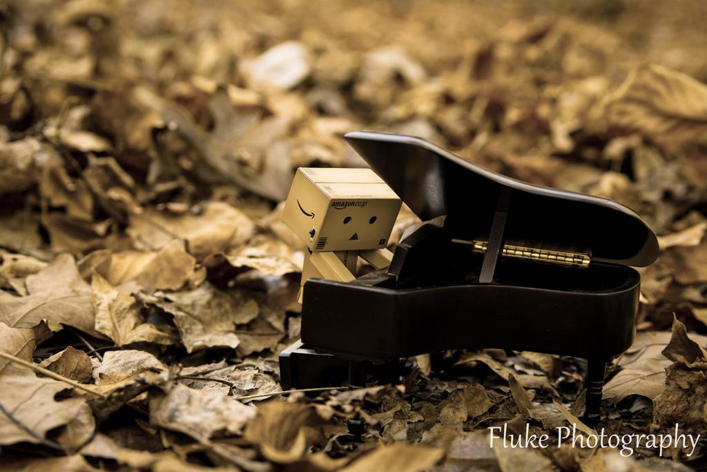 Music box by flukephotography