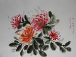 chrysanthemum, watercolor