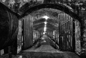 Tahbilk Winery Cellar by djzontheball
