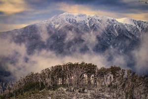 Mt Bogong Victoria Australia