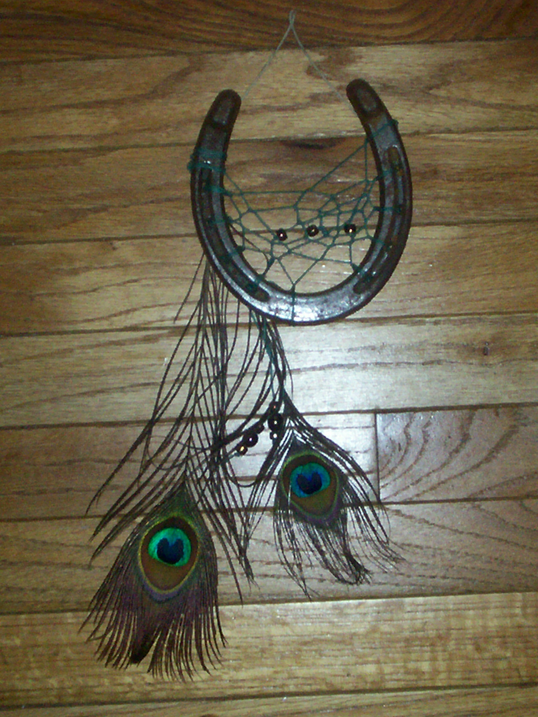 Horseshoe dreamcatcher by melj306 on deviantart for Horseshoe arts and crafts