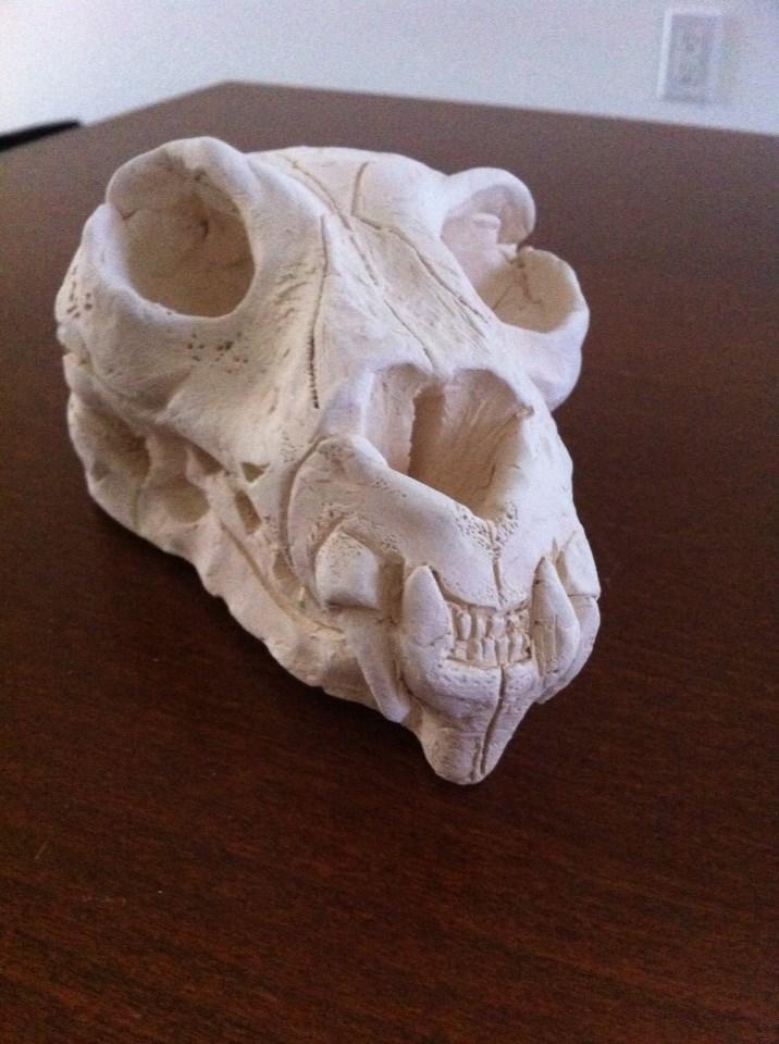 cat skull sculpture homework by aragorn3