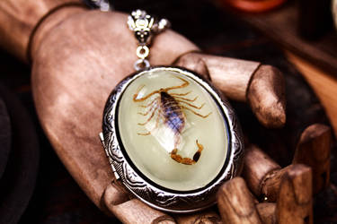 Scorpion locket - glow in the dark by Curionomicon