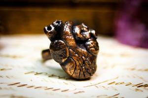 Anatomical heart ring