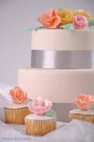 Cake and The CupCake by Shinji-Mamoru