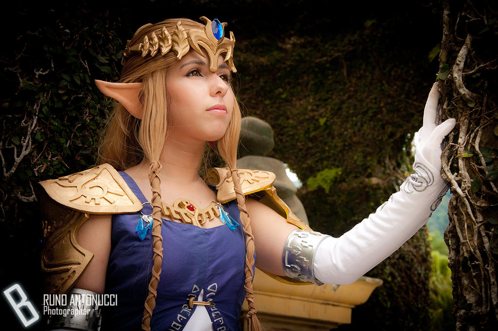 Princess Zelda by Shinji-Mamoru