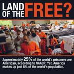 Incarcerated Freedom