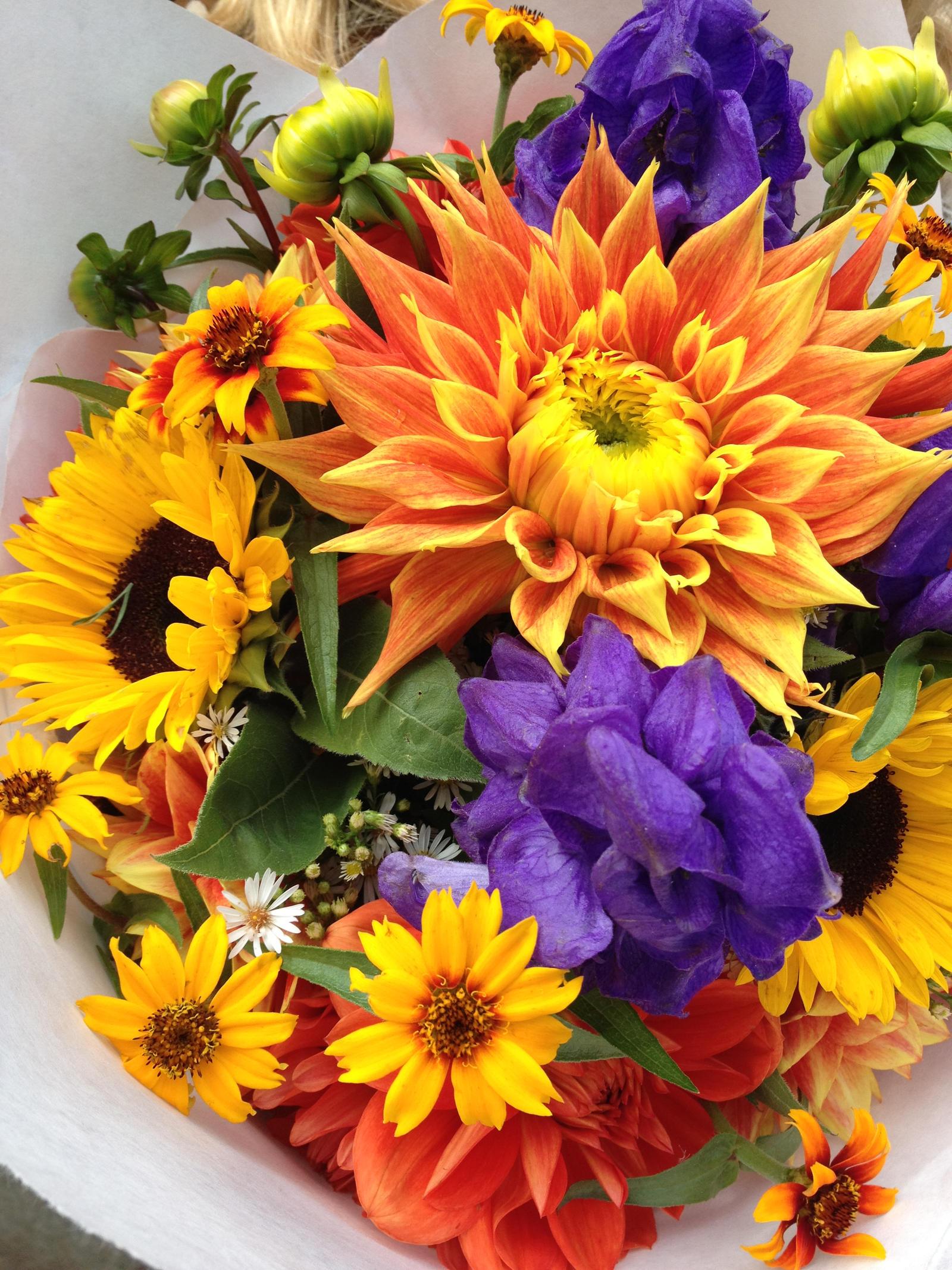 beautiful green fall flower - photo #19