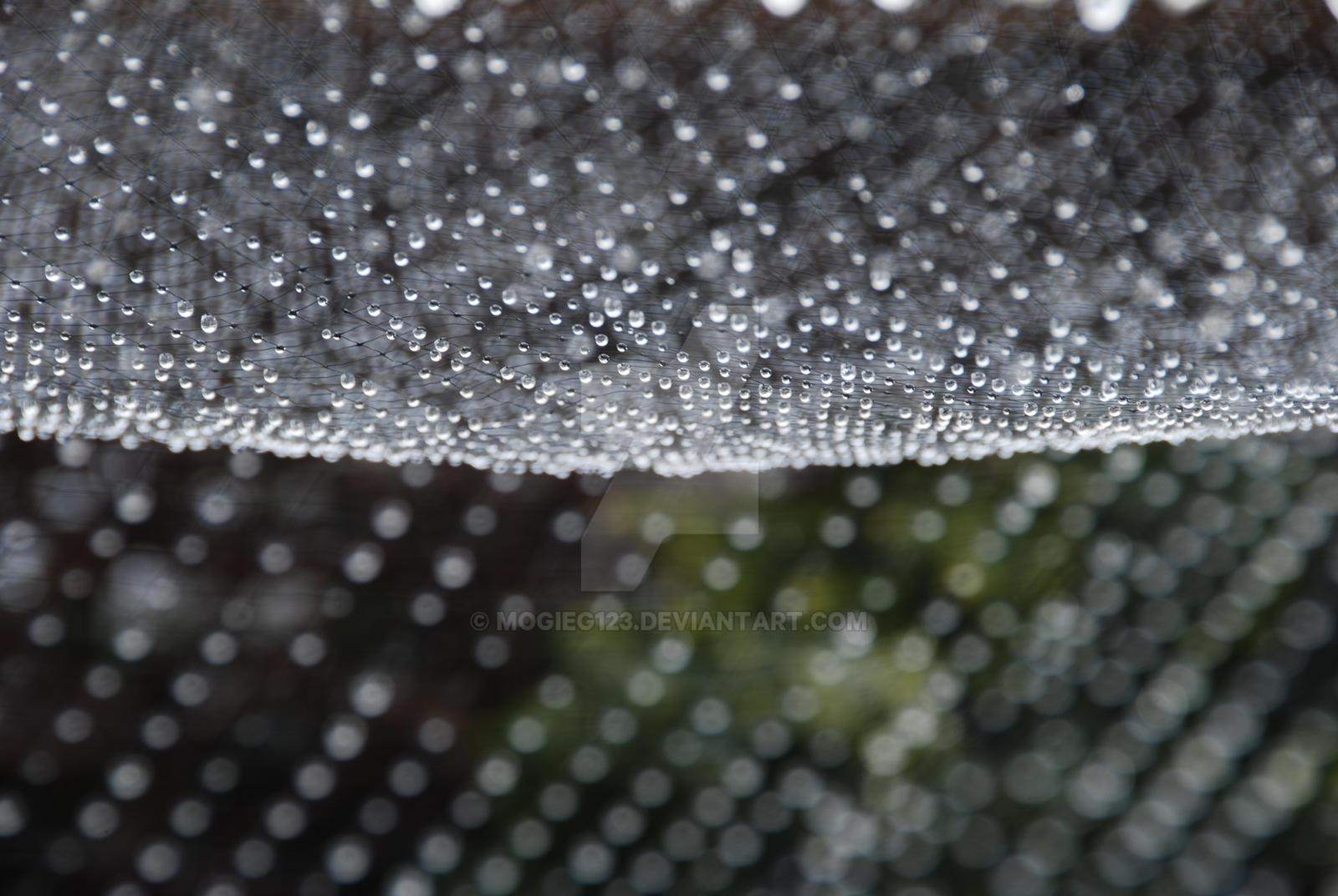 Very wet netting