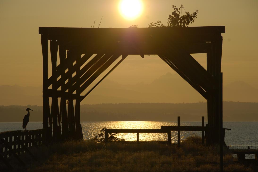 Abandoned Dock at Sunrise closeup by MogieG123