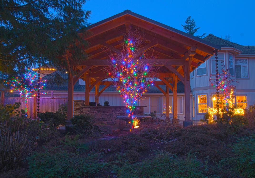 Lights Decorating My Backyard by MogieG123