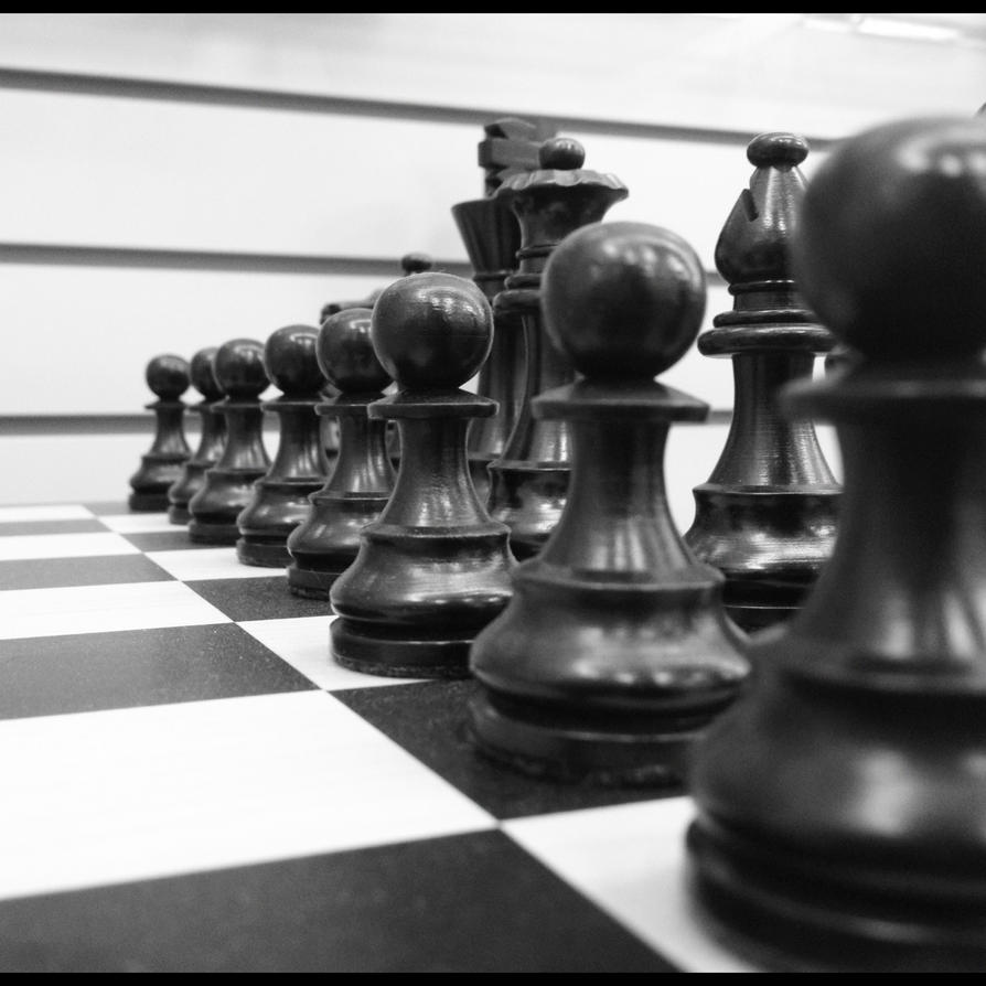 Anyone Ready For a Game of Chess? by MogieG123