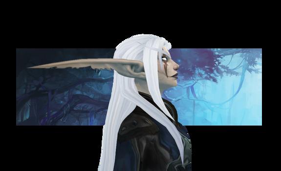 Banner: Warden Shadownight