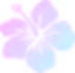 Bright Hibiscus by rockstar-kat666