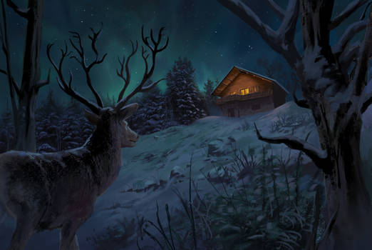 Winter night