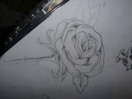 rose 1 by Emmieloo