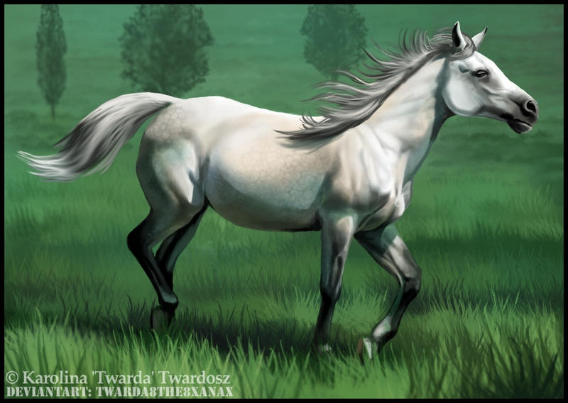 Horse painting no 2 by Twarda8