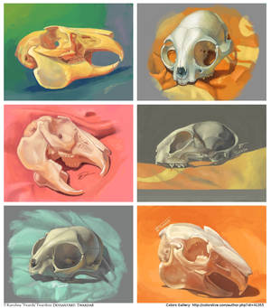 3DS Skulls