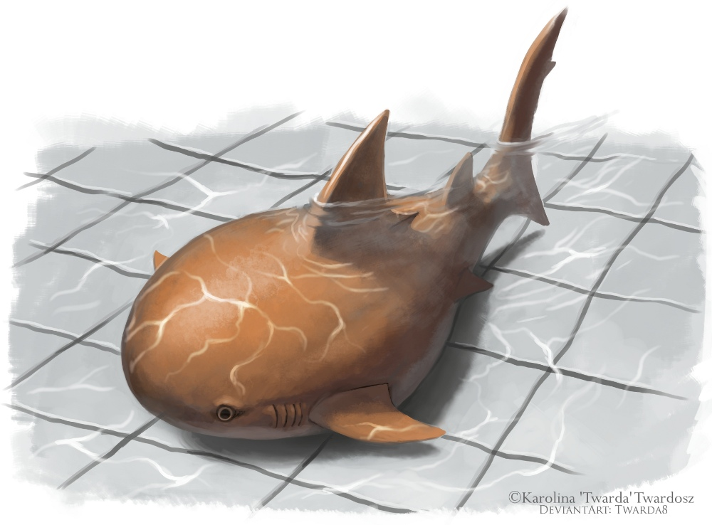 Dream Shark by Twarda8