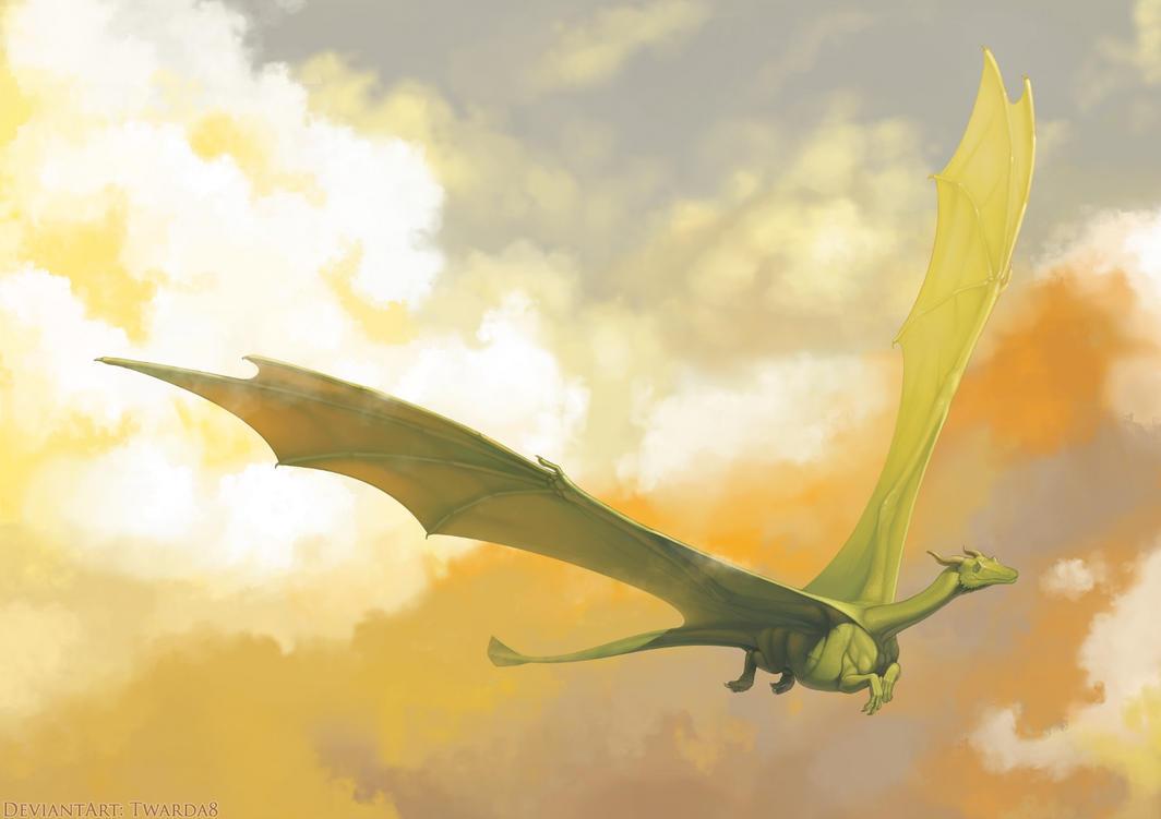 COMM: Dragon Flying by Twarda8