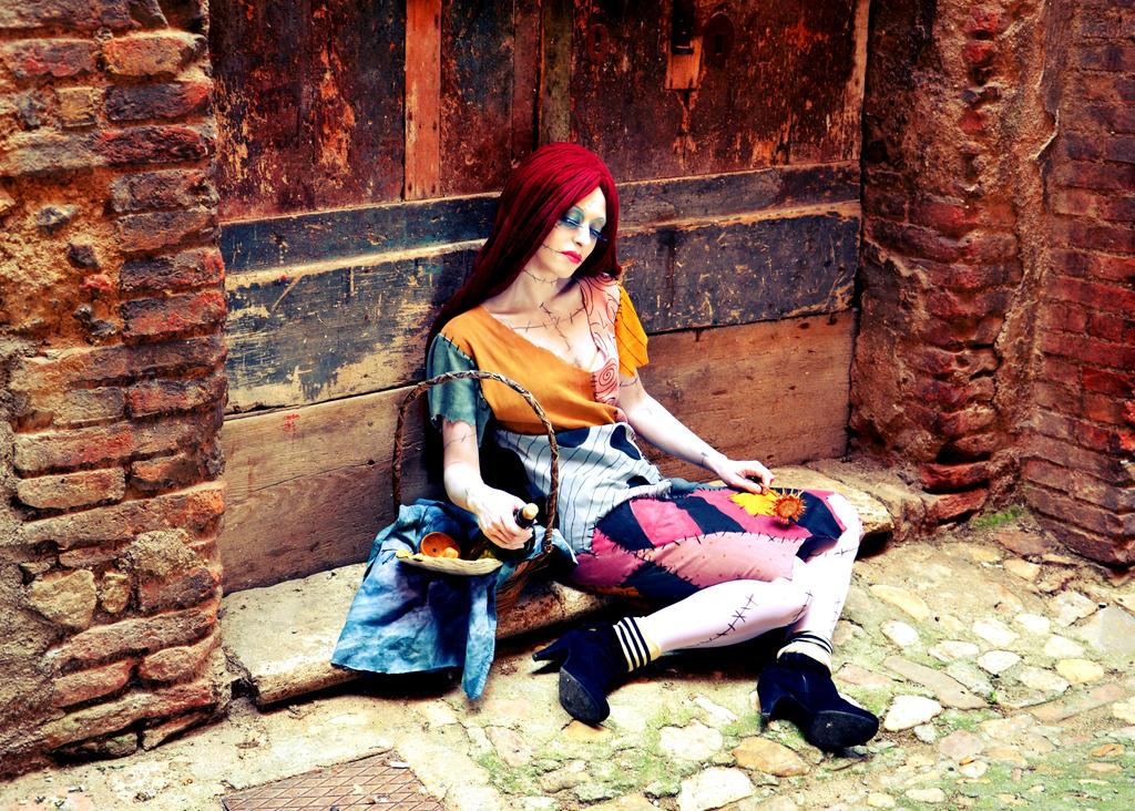 Sally the Ragdoll by Lady-Ragdoll