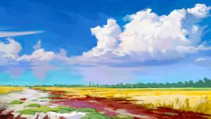 Summer landscape in Ukraine